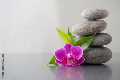 Spa stones. - 55773245