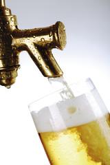 Frisch gezapftes Bier