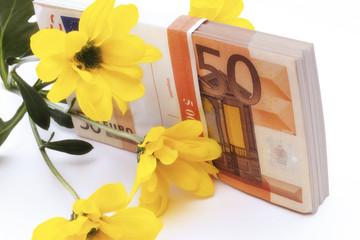 Euro-Banknote und gelbe Blume, Nahaufnahme