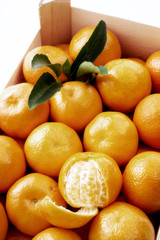 Box mit Mandarinen