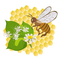 icon with a bee and flowers on a background of cells