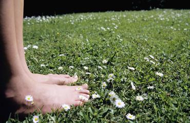 Füße auf Gras mit Gänseblümchen, im Vordergrund Fokus