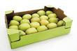 Äpfel in Pappschachtel, erhöhte Ansicht