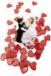 Hochzeitspaar Figuren tanzen auf rotem Herzen, erhöhte Ansicht