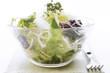 Grüner Salat mit Kresse