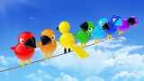 rainbow colored birds on a cable in front of blue sky