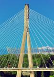 Żółty most - 55779221