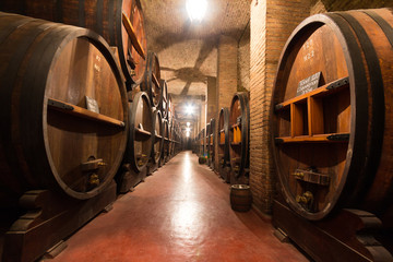 Large wooden casks in a wine cellar, Argentina