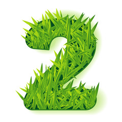 Grass vector numbers. Two.