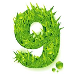 Grass vector numbers. Nine.
