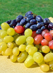 Green and red ripe grape on the grass