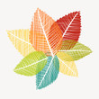Colorful abstract transparent leaves autumn background. EPS10 fi