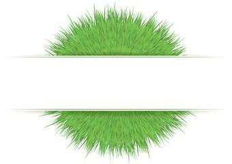Fascia bianca su cespuglio di erba