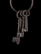 Isolated Skeleton Keys