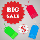 Color sale tags vector set isolated