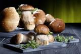 Fototapety funghi freschi boletus su tavolo grigio sfondo verde