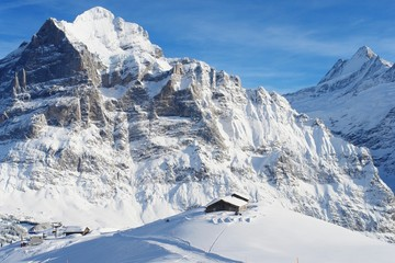 Grindelwald, view of the chalet and Mount Wetterhorn
