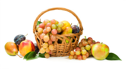 Harvest. assortment of fruit in a basket isolated on white