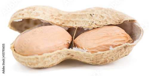 Groundnut close-up isolated on white background