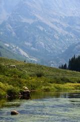 Hiking Trail At The Mountain lake