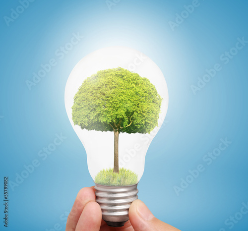 Ideas light bulb in hand