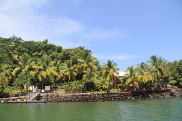Les Iles du Salut - Août 2013