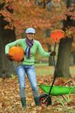 Autumn in the garden - harvest of pumpkins
