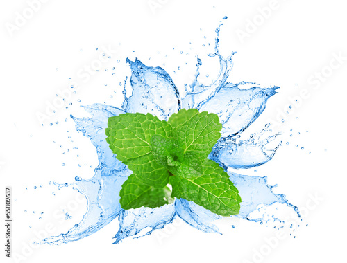 Mint leafs water splash - 55809632