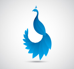 abstract peacock leaf icon