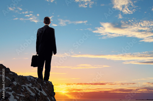 Businessman on top of hill