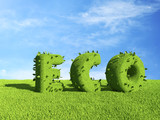 ECO text  on grass field. Ecology concept 3D