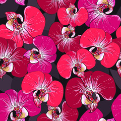 Seamless vector pattern - pink orchid flowers