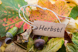 Fototapety herbst
