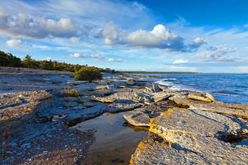 Rocky Coastline of Gotland