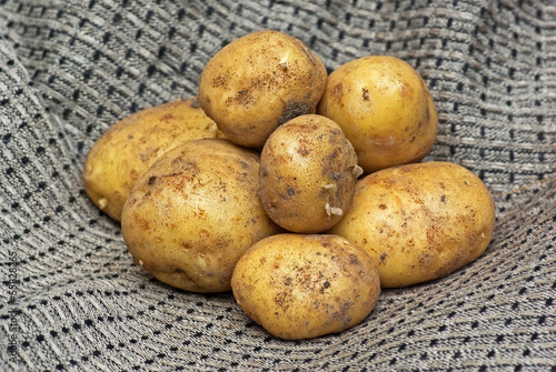 Group of new potatoes in linen towel.