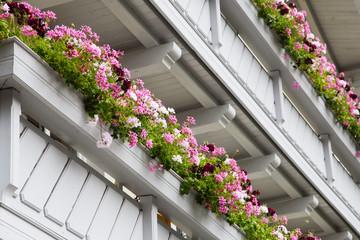 Balkone mit Geranien