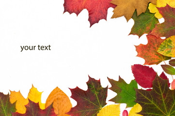 Herbst your text