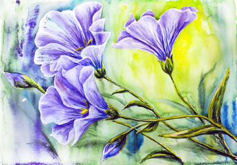 Wildflowers. Watercolor painting.