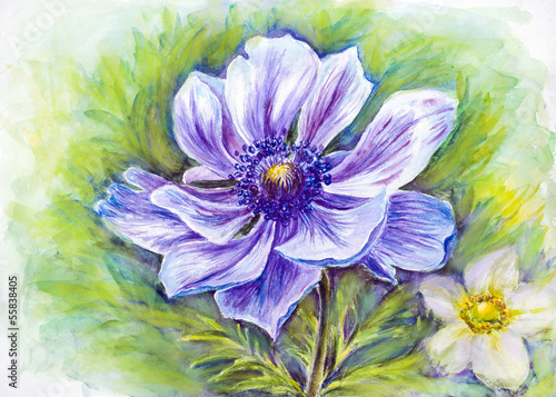 Japanese Anemones flower. Watercolor.
