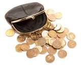 Leather purse and coins