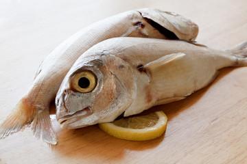 Two raw sea bream