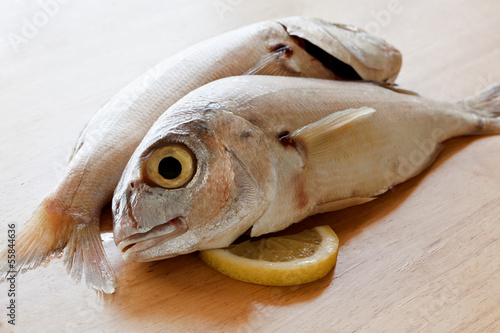Two raw sea bream