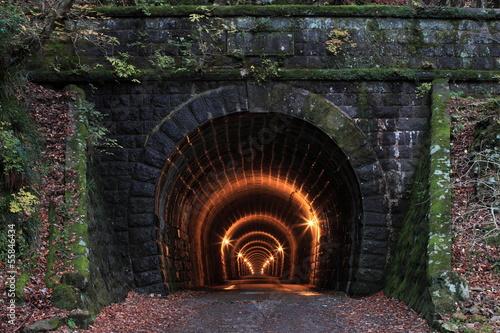 旧天城トンネル(伊豆市側) - 55846434