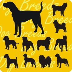 Dog breeds - vinyl-ready vector illustration