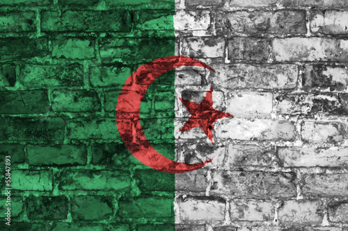 Grunge style wall with Algerian flag graphic