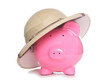 piggy bank wearing safari hat