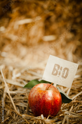 "Tasty red apple on straw, tagged as ""bio"" product"