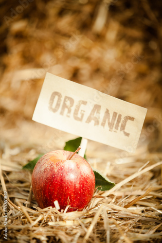 "Fresh red apple on straw, tagged as ""organic"""