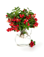 cowberries in a glass pitcher