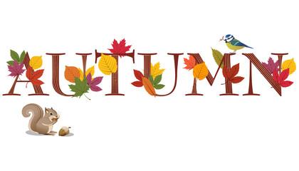 秋 テキスト 森の動物 AUTUMN text decorated with leaves, bird and squirrel